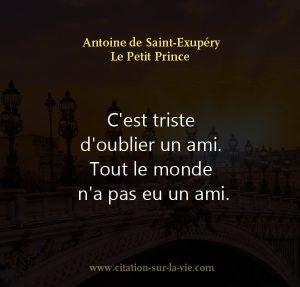 Citations Le Petit Prince