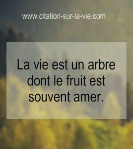 citation sur la vie arbre fruits amere