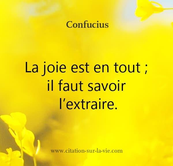 confucius-citation la joie est en tout savoir extraire